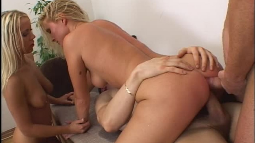 Kathy Anderson And Bibi Take Dick In Every Hole